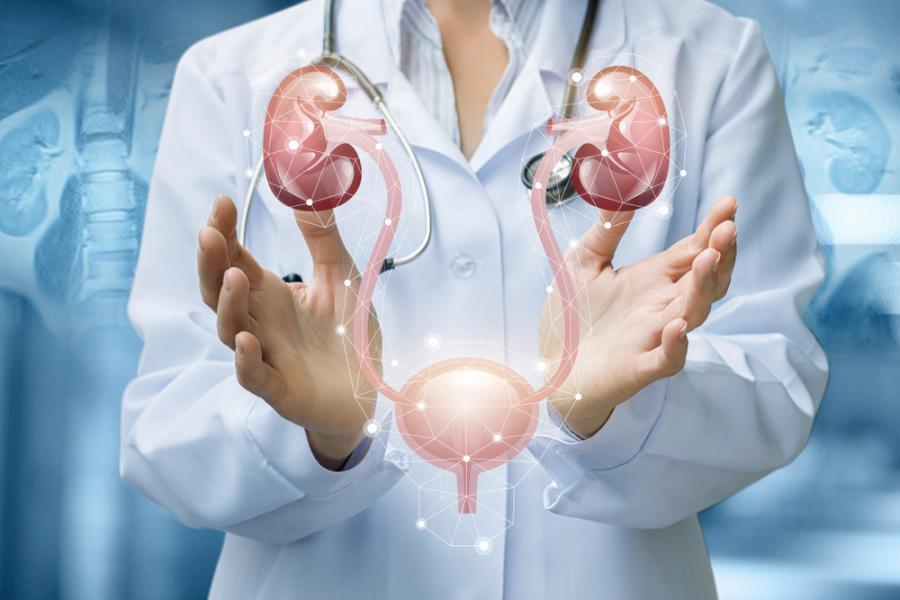 Enfermedades urológicas generales